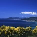 44. Vista sulla costa (foto Zuffo)